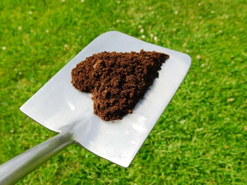 Compost_800x600